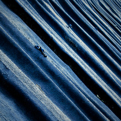 Waves / Onde (Giorgio Ghezzi) Tags: waves onde plate lamiera roof tetto giorgioghezzi abstract astratto