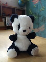Panda (kayatkinson-simson) Tags: pandabear stuffedtoy teddybear opshopping thrifting dragonfly worldglobe