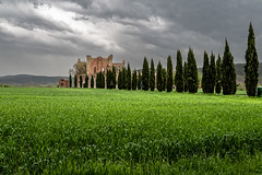 Ciel noir en Toscane (Lucille-bs) Tags: europe italie italy italia toscane tuscany sangalgano cyprs paysage herbe cielnoir cieldepluie abbaye ruines flickrtravelaward