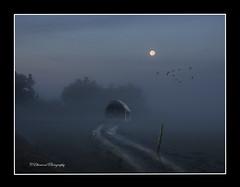 Moon Light (windshadow2) Tags: fog foggy moon light barn road rural