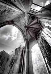 Ruin Church Wachau (Andr Schnherr) Tags: 40d visionhunter wachau church kirche bw blackwhite gebude building