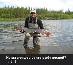 Когда лучше ловить рыбу весной? (ГocРыбнадзop) Tags: macro sea the4elements christmas nevada airport abstract shadow