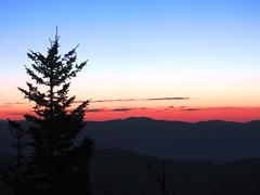 3830ex  P900  Dawn's sneak peek (jjjj56cp) Tags: sunrise dawn rosydawn peaks mountains smokies gsm gsmnp greatsmokymountains greatsmokymountainsnationalpark clingmansdome abovetheclouds ridges outlines silhouette tree evergreen evergreensilhouette p900 jennypansing