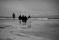 71937_1425927256884_7295725_n (JuliaKaczorowska) Tags: friends sea beach sailing majorka