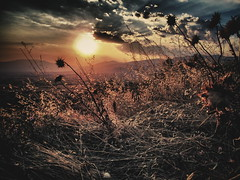 The End of the Day (giorgosgrigoriadis16) Tags: flowers sunset mountains flower nature canon landscape hellas greece drama  colourscape  mountainslandscape dhrama greeklandscape canonnature dramascenes   canonlandscape canongreece canonpowershotg10 powershotg10 dramalandscapes canoncloudsandsky cloudsanssky eastmakedonia canongreekscene canonatmosphere