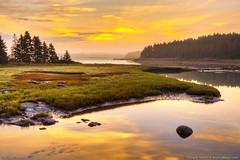 Acadia National Park (Greg from Maine) Tags: reflection nature fog sunrise golden nationalpark foggy barharbormaine tidal acadia barharbor morningmist acadianationalpark goldensunrise trentonmaine