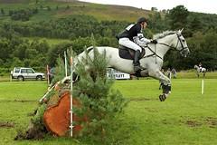 Blair Castle International Horse Trials, 2012 (Absolute Folly) Tags: horses crosscountry equestrian blaircastle eventing horsetrials
