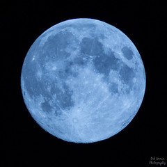 Blue Moon [EXPLORED!] (dmoranphotog) Tags: moon bluemoon odc project52 cy365 cy3651