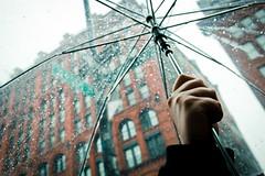 New York facets - Umbrella cover  [Explored] (_Franck Michel_) Tags: rain umbrella hand bokeh explorer main pluie drop explore goutte parapluie desat explored