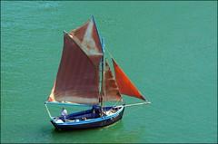 L'Anémone. Explore. (glemoigne) Tags: brittany bretagne breizh brest bzh finistère traditionalboat tvk estuaire iroise plougastel gaffrig radedebrest plougasteldaoulas coquillier vieuxgréément glemoigne gilbertlemoigne tvk2012