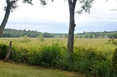 Ah there's the great meadow (kuntheaprum) Tags: hiking wildliferefuge sudburyriver migratorybirds bearhill greatmeadow bearhilltower greatmeadowwildlife