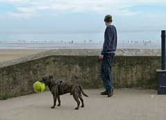 The meaning of life (Andy WXx2009) Tags: dog pet seascape man beach wall wales coast football seaside artistic candid streetphotography coastline barryisland bristolchannel mygearandme