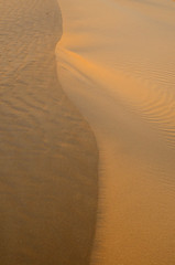 sand composition (SAUD ALRSHIAD 2  ) Tags: abstract sahara lines landscape sand exposure waves desert line arabia l sands riyadh landscap ksa saud saudia riydh  arabin  althomamah d7000  alrshiad aljinadriah