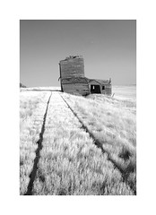 Grain Elevator-Okaton, South Dakota (j_piepkorn65) Tags: blackandwhite abandoned southdakota grainelevator railroadtracks okaton ruralexploration