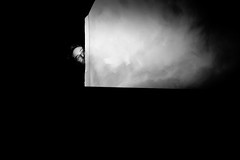Curiosity (Hernan Piera) Tags: foto fotografia photo photography image pic fotografo hernanpiera photograph photographer blancoynegro contraste rectangulo escondido escondite asomado asomarse curioso curiosidad espia espiando espiar chico retrato gafas anteojos blackandwhite contrast rectangle hidden spy hiding curiosity curious peek peering spying glasses goggles guy portrait