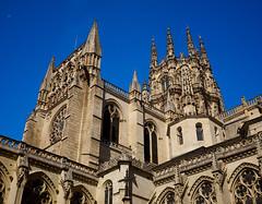 Burgos, Catedral (diocrio) Tags: burgos catedral gtico