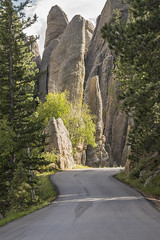 Needles Highway (Cat Girl 007) Tags: blackhills boulders cathedralspires custerstatepark famousplace geologic geology granite landscape nature needleshighway norbeckscenicbyway pavedroad road rockformations rocks rocky scenic southdakota stones travel traveldestination trees