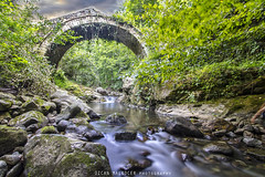 D. Karadeniz 2016_01 049_1_cld (Ozcan MALKOCER) Tags: ordu turkey trkiye travel history historic tree treearea cloud fantastic scene scenery water river rock stone bridge historicalbridge architecture architectural arch detail nopeople historicalimage colourimage photography tranquility sky nature day daylight
