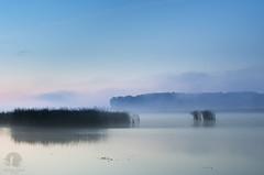 Stillness at dawn (PeterGrayPhoto) Tags: stillness calm silence water lake pond warmia polska poland dawn morning fog mist