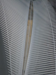 IMG_6827 (gundust) Tags: nyc ny usa september 2016 newyork newyorkcity manhattan architecture wtc worldtradecenter calatrava station path wtctransportationhub transportationhub void oculus wings sculptural verticality white steel glass lighting sun alignment 911 september11 memorial 1wtc oneworldtradecenter som skidmoreowingsmerrill davidchilds oneworldobservatory spire skyscraper stel observationdeck downtown