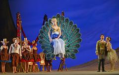 Delia Matthews (DanceTabs) Tags: dance ballet brb birminghamroyalballet dancers classocalballet shakespeare