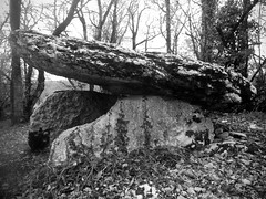 Late autumn dolmen (AJ Mitchell) Tags: megalith monolith dolmen neolithic bronzeage prehistoric neoltico nolithique
