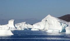 Icebergs Avenue in Qeqertaq (twiga269  FEMEN #JeSuisCharlie) Tags: twiga269 om  whatareyoutrainingfor gettingstrongereveryday wanderlust wilderness mountainwilderness mw gngl grandnordgrandlarge gro023 iceisbeautiful greenland kalaallit nunaat kalaallitnunaat disko bay baiededisko diskobugten iceberg ilulissat qeqertaq saqqaq groenland grnland groenlandia grnland grenlandia   kayak ice hielo glace glacier immense gletscher ericchazal arctic diskoline inlandsis torssukatak kangilerngata kangilerngatasermia eqi eqip sermia smallesund
