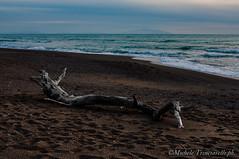 _DSC0953 (. ..::..::::....:::::m.trinciarelli photo::..:..) Tags: mare tramonto cielo spiaggia maredinverno pace