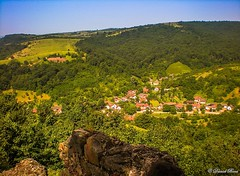 From the fortress (Daniel Boca) Tags: fortress soimos june summer colour colours colorful color colors green blue sky nature landscape landscapes light sunlight tree trees forest