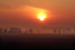 Mantova (Max Short) Tags: mantova italia italy fog foggy house home casa fattoria farmer contadino alba rosso sunset dawn tre trees alberi albero