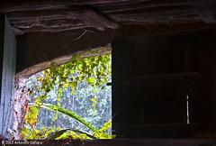 Ws_cantina-4 (no ... apostrophe) Tags: italia natura finestra pioggia catania sicilia