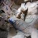Yungang Grottoes Colour - Maitreya