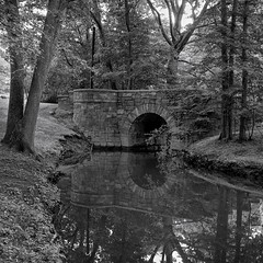 Olmsted's Work (jores59) Tags: 6x6 boston mediumformat 120film brookline bostonma longwood agfaisolette riverway emeraldnecklace muddyriver fredericklawolmsted ilfordfilm