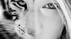 she's an animal. (she's.poison) Tags: blue original white black cute girl beauty fashion animal collage idea photo cool eyes pretty sweet tiger blonde inspiring blend genial
