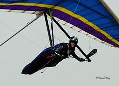 Hang Glider ~Dean Miller~ (Ron1535) Tags: golden colorado wing sail roll pitch glider lookoutmountain hangglider thermals mtzion hanggliding deltaplane yaw rigidwing airframe freeflying freeflight freeflyer windcurrents glideraircraft soaringaircraft