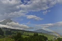 (AincaArt) Tags: mountain berg schweiz rainbow suisse alpen svizzera regenbogen niesen swissalps berneroberland berneseoberland stockhorn svizra mungga nikond7000 shymorningrainbowduringafinedrizzleinthemorningsun aincaart