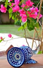 Shattered Pottery (A i z a A h m e d) Tags: pink flowers blue white green broken beautiful grass garden branch pattern patterns branches pottery shattered burner incense tattered