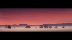 Dreamworks || HAWKESBURY WINTER (rhyspope) Tags: road street morning autumn shadow red sky orange cloud mist color colour tree green fall grass weather yellow fog rural sunrise canon fence vanishingpoint track path country lowlands australia tunnel richmond foliage lane windsor aussie hdr highdynamicrange gravel hawkesbury cornwallis 500d mygearandme rhyspope