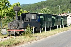 A narrow gauge train composition - DSC01918 (MonSwe) Tags: train wagon macedonia 600 narrow jz 994 feldbahn kicevo brigadelok dn2t