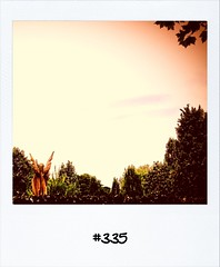 """#DailyPolaroid of 28-8-12 #335 • <a style=""""font-size:0.8em;"""" href=""""http://www.flickr.com/photos/47939785@N05/7935284020/"""" target=""""_blank"""">View on Flickr</a>"""