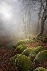 Basaburua mágica ll (arbioi) Tags: bosque euskalherria navarra nafarroa gr12 ireber basaburua arrarats zuparrobi