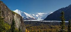 Matenuska Glacier 6 (Ed Boudreau) Tags: clouds river fallcolors bluesky glacier conifer snowpeaks alaskamountains