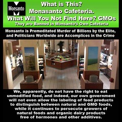 Monsanto Cafeteria - without their own GMO food products (DanVoglesong) Tags: ironic gmofreeagriculture gmofreeworld gmofreeusa sansogmorganicgmofreeworld millionsagainstmonsanto gmofoodlabeling monopolistbillgatessupportsgmos corruptcorporations millionsagainstmonsantosyngentadowbasfdupontandbayer proposition372012 whatisinmysoup