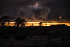 am (sapunaralex) Tags: chile patagonia luz sol nikon rboles arboles amanecer nubes jess dios raro magallanes puntaarenas extrao masall d7200
