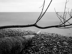 Horizontal, vertical, nature, human. (R. Wozniak) Tags: blackwhite bw blackandwhite lakemichigan longexposure