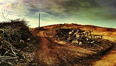 Run to the hills (Benedictus Schwartze) Tags: hill sweden run gothenburg brudaremossen oldcitydump