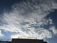 ciel et toit (alexandrarougeron) Tags: ciel nuage france bleu blanc toit paris extrieur hauteur