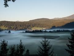 SPLINSON's Pixelwurst (spline_splinson) Tags: alpen alps switzerland bodennebel fog fogonfield groundfog landscape nebel schweiz suisse trin graubnden ch