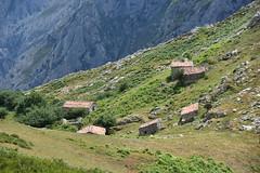 Las Majadas de Ostn (jacques_teller) Tags: spain espaa cares ostn picosdeeuropa shelter mountain stone nikon landscape field hills gorge