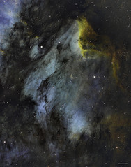 IC 5070 The Pelican Nebula (DocRX) Tags: ic5070 pelican nebula constellations astronomy astrophotography night stars galaxy narrow band dso deep space nebulosity telescope hubble palette astrometrydotnet:id=nova1722247 astrometrydotnet:status=solved